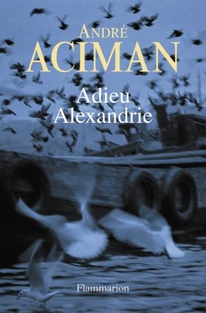 Adieu Alexandrie