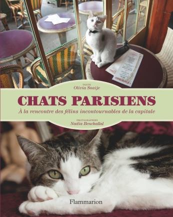 Chats parisiens