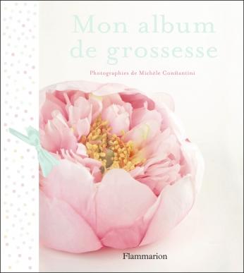Mon album de grossesse