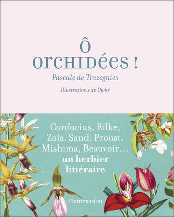 Ô orchidées !