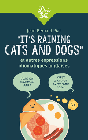 «It's raining cats and dogs» et autres expressions idiomatiques anglaises
